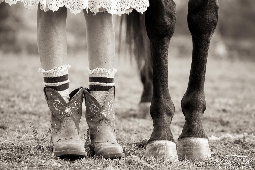 Pittsburgh horse photographer